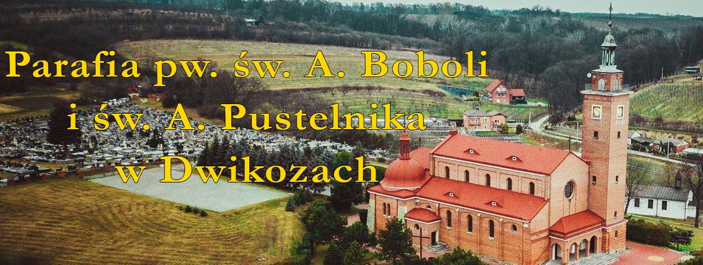 Parafia pw. Św. Andrzeja Boboli i Św. Antoniego Pustelnika w Dwikozach